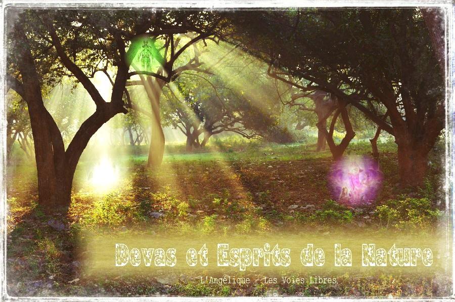 Sur les catégories de Devas et les esprits de la nature