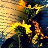 Coup de coeur littéraire