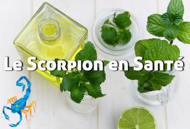 8-scorpion