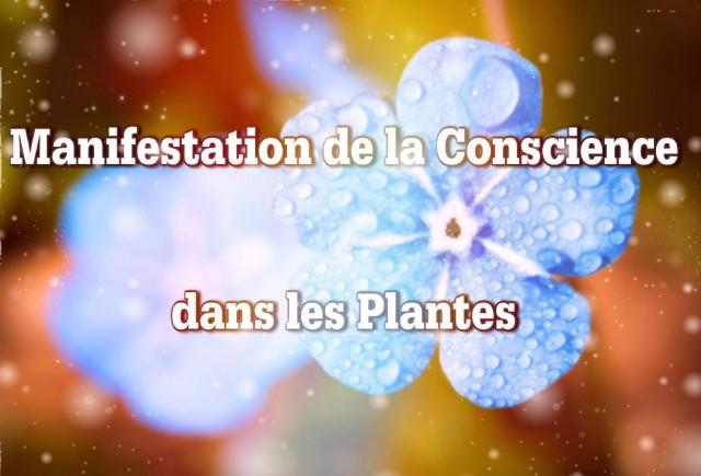 manifestation-de-la-conscience3