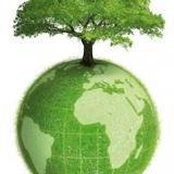 Terre-écologie-vie