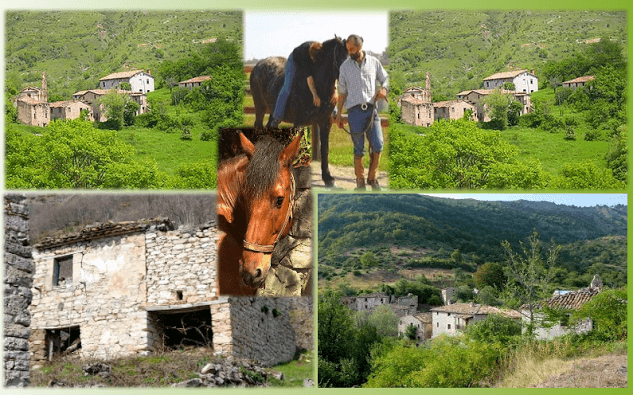 Projet Ecovillage en cours