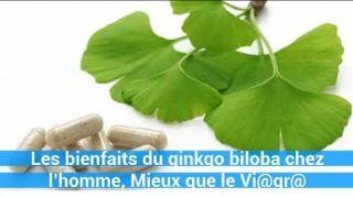 Les bienfaits du ginkgo biloba chez l'homme, Mieux que le Vi@gr@ , un remede naturel - c0ns3ils