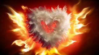 L'Unification à l'Amour