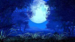 Musique thérapeutique pour dormir 1 - (6/8)
