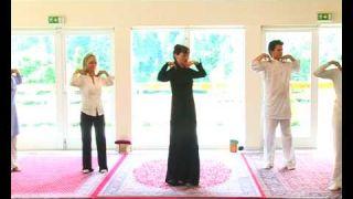 Lou Yong (Qi Gong) Vol 3 - L'énergie de la guérison, contenu intégral d'un stage
