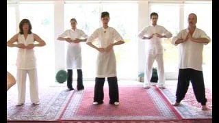 Lou Yong (Qi Gong) Vol 2 - L'énergie des cinq éléments, contenu intégral d'un stage