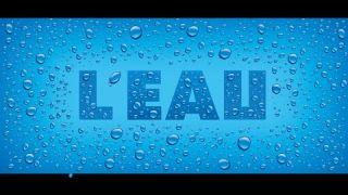 La structure de l'eau : Docteur Guy LONDECHAMP