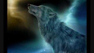 Alone Wolf (violin)