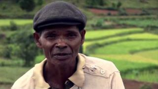 ACTION CARBONE - AGROECOLOGIE ET FORESTERIE A MADAGASCAR