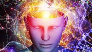 La neuroplasticité : Dr Gérard VIGNERON