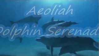 Dolphin Serenade -Aeoliah.
